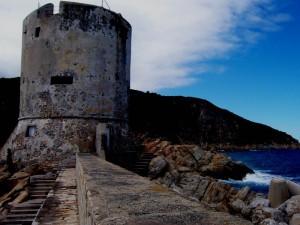 Torre del porto ..