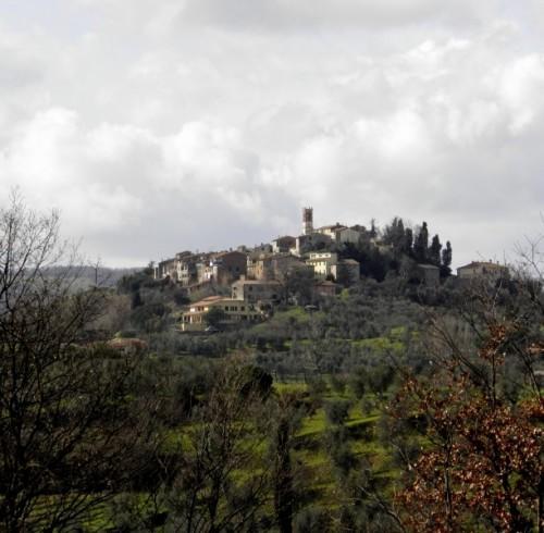 Terricciola - Fra le colline di Terricciola