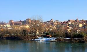 Moncalieri e il Castello