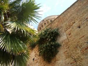 Fortezza medioevale - particolare delle mura