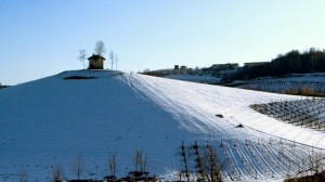 Panorami da Roero: Monteu