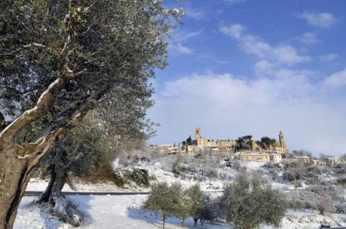Castelbellino - Lievi nugoletti
