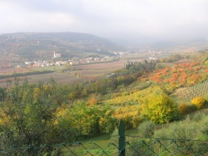 Autunno a Marcellise