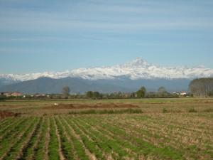 panorama da Marene, e sullo sfondo il Monviso