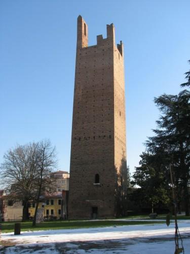 Rovigo - Torre Donà con neve