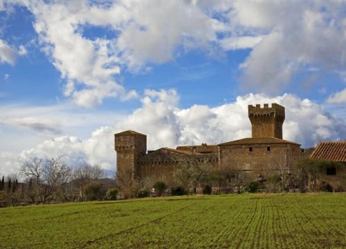 Pienza - Castello di Spedaletto n° 1