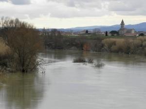 Località Cascinesi III