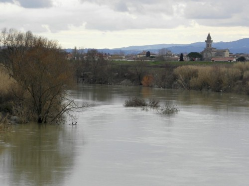 Cascina - Località Cascinesi III