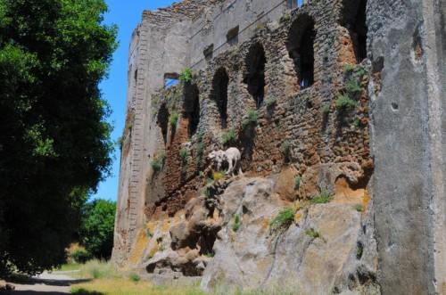 Canale Monterano - Il leone del Bernini...ma non è quello originale!