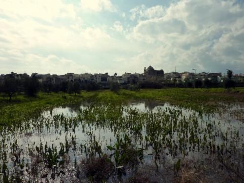 Neviano - dopo un bell'acquazzone, Neviano
