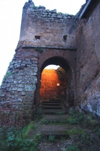 Un ingresso al castello!