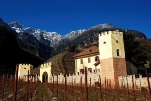 Il castello dove si discute di vino