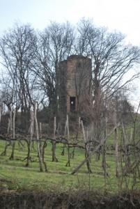 Rocca di Nanto
