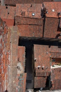 Torre dei Guinigi da sopra