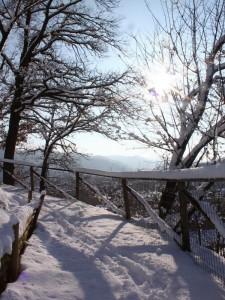 La via della neve