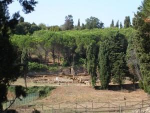 Populonia: gli Etruschi abitano ancora qui.