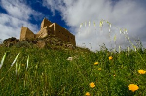 Prato, margherite e cielo sotto al castello