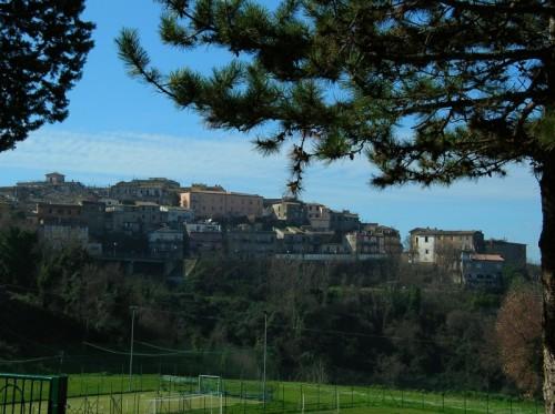 Magliano Sabina - Sotto i pini
