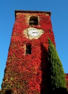 La Torre ed il cipresso