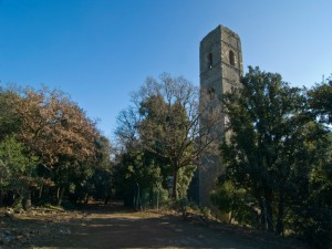 Parco Maremma - S.Rabano - la torre