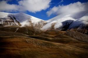 monte prata parco nazionale monti sibillini……io pecora nera del team..