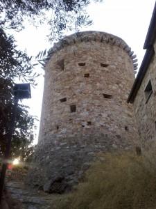 Torre di Torrazza vista dietro