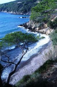 Costa Verde -  Viticcio