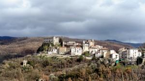 Carpinone I