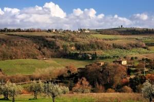 La bellissima campagna toscana: fattorie a S.Pancrazio