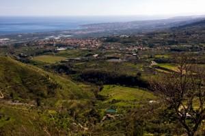 Panorama di Piedimonte e le sue campagne