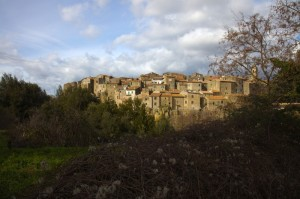 Farnese #5