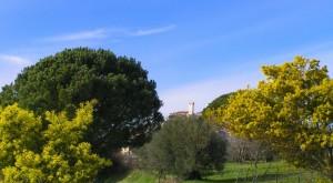 svetta la torre del castello sulla campagna sabina