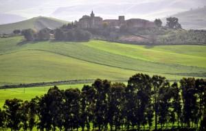 Al Borgo verde!