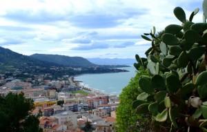 Amata Sicilia