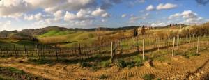 La Bellissima campagna toscana - Montaccio - Certaldo