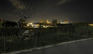 Firenze 23