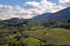 LA bellissima campagna toscana - Montemagno  -Quarrata