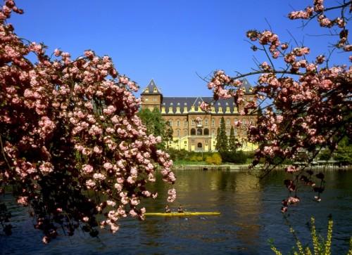 Torino - Aspettando la primavera