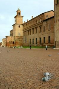 Il castello di Carpi e i suoi piccioni