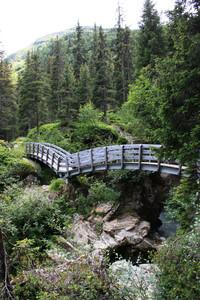 ponte sul sentiero