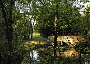 Ponte in giardino