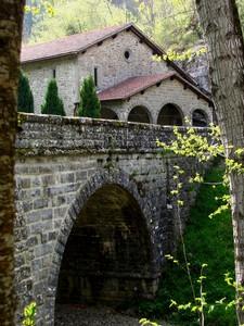 Fra gli alberi spunta il Ponte delle Calli