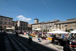 le pulci in Piazza Duomo