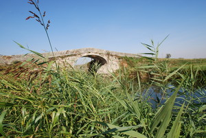 Ponte gobbo a Cascina Conca