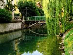 un piccolo ponte del Giardino Salvi
