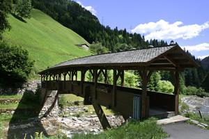 il ponte che va nel verde
