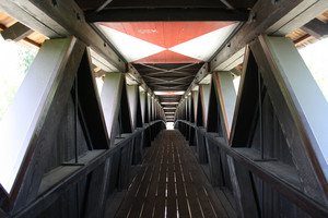 "ponte ""legnoso"""