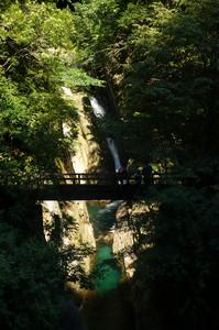 Un ponte fra noi e la natura