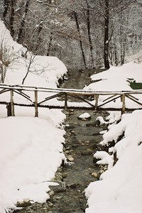 Avvolto dalla neve