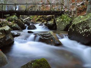 Ponte sul Dardagna – Madonna dell'Acero (BO)